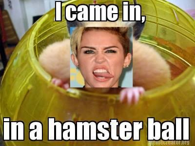 MileyHamster