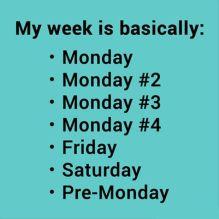 MondayWeek
