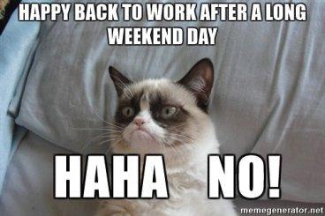 WeekendGrumpyCat
