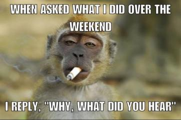 WeekendMonkey