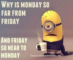 MondayMinions2