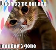 MondayGone