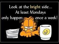 MondayGarfield