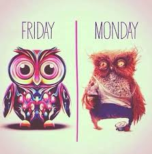 MondayFriday