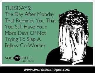 TuesdaySlap