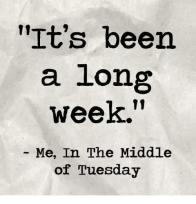longweek3