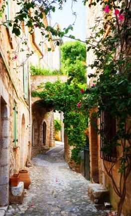 Provence7
