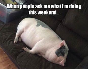 WeekendSleeping3